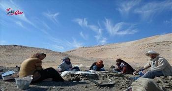 «منصوراصوراس».. شاهد على قدرات المرأة المصرية